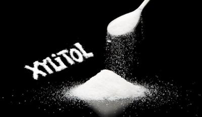 Toxic-Xylitol-sugar-substitude.jpg